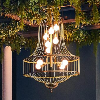 Birdcage Chandelier Feature Light