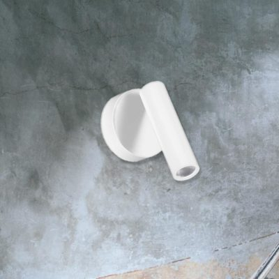 Wall Mounted Spot Light
