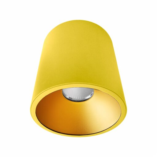 Yellow Gold Surface Mounted LED Downlight