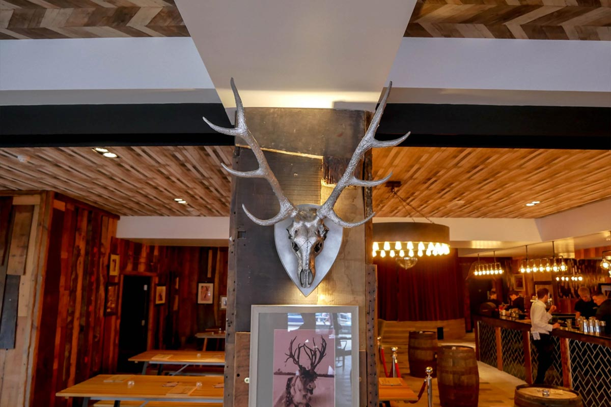 Antler, Newcastle Decor