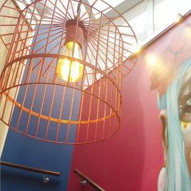Birdcage Light Fitting,Birdcage Lighting