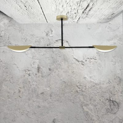 Modern Double Semi Flush