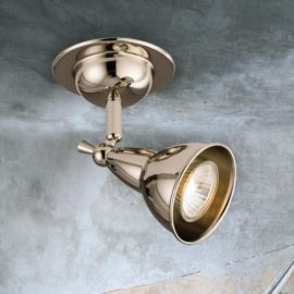 Single Polished Nickel Spotlight